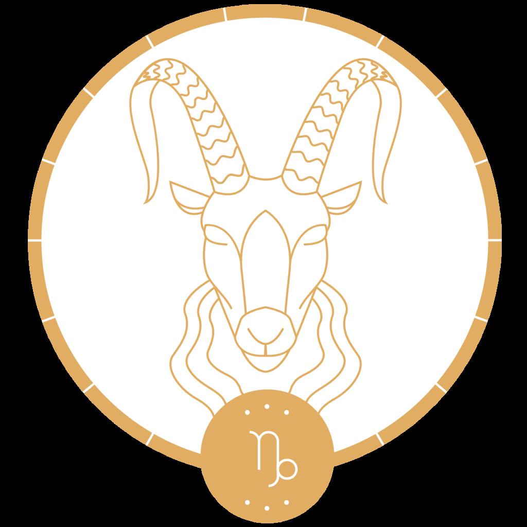 pierres et signe astrologique capricorne